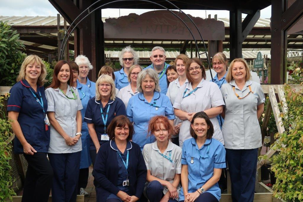 Dorset's Leg Ulcer Service celebrates 20 years of care